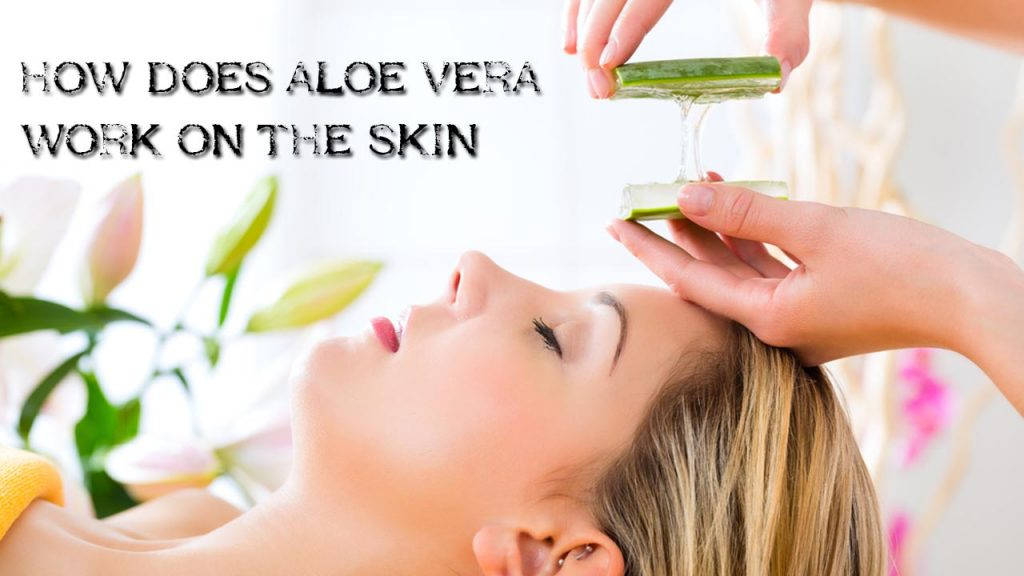 How does Aloe Vera Work on the Skin?